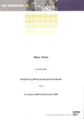 SAP Introductory Workshop Certificate